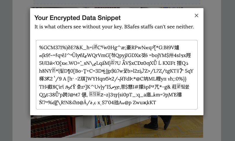 Encrypted Image Data